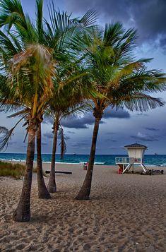 USA, Florida, Fort Lauderdale Beach - Rich Haig