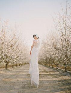 Almond Orchard Wedding Inspiration