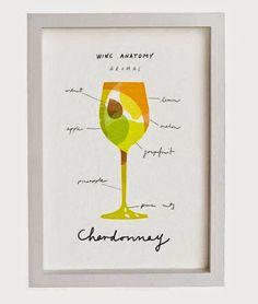 Wine Anatomy