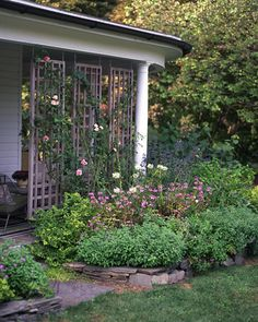 Hanging Trellis as a space divider