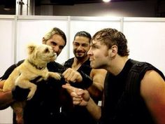 The Shield (Dean Ambrose, Seth Rollins, Roman Reigns)