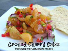 Ground Cherry Salsa | Sweet Domesticity