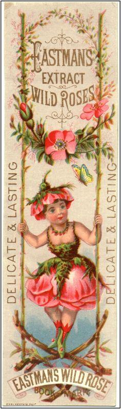 Vintage Perfume Fragrance Card