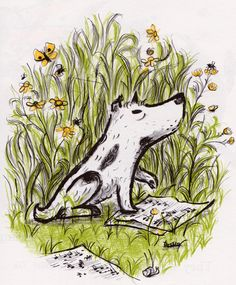 illustrated by Margaret Bloy Graham (1960). (Harry the Dirty Dog)