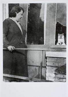 black n white photo of cat |  roger.laute | flickr