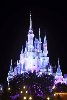 Magical Trip To Disney – How to save money
