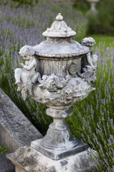 Urn in the  lavender garden in June
