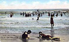 Surf Bathing  Isle of Palms, Charleston, S.C.  Postmarked 1930