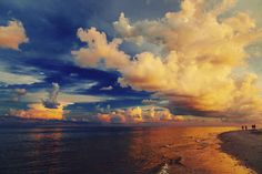 Then one of these will happen: | 21 Photos That Prove Florida Is Paradise