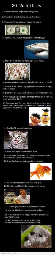 Random facts of randomness
