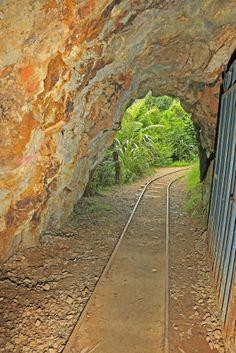 Gold mine adit, Karangakake Historic Reserve, Waikato, New Zealand