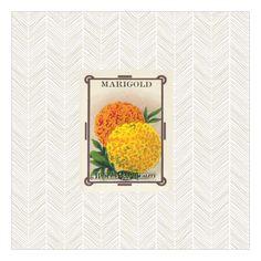 Pretty Little Studio Marigold Catalog