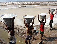 Workers carrying salt in Chennai, South India.