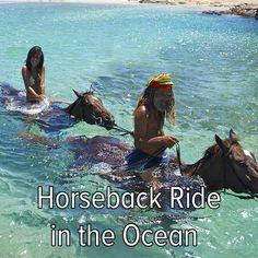 Bucket list: horseback ride in the ocean.