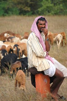 A goat herder rests on a milestone as his goats go about their business, South India.