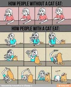 Eating with or without a cat