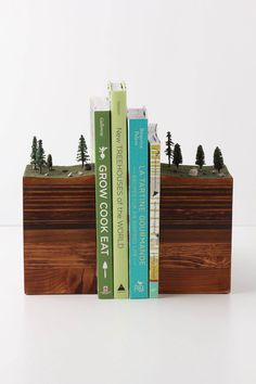 Hmmm...DIY? Bookends Of The Earth