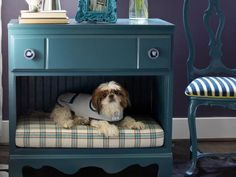 old chest of drawers turned into pet bed and still useful as a table and drawer