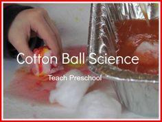 Cotton ball science in preschool