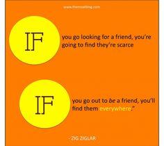 ZIG - friends