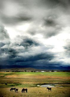 Wonderful & Wild Wyoming - photo by beersandbeans.com