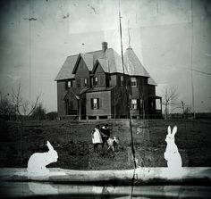 The Ghost Rabbits of Winthrop Hill by snailbooty, via Flickr