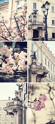 Springtime in Paris!!