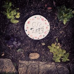 Garden stepping stone made from concrete and beach finds - pretty shells and colorful pebbles