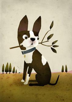 Patrick Latimer illustration | Cape Town | South African freelance illustrator | Blog | Boston Terrier