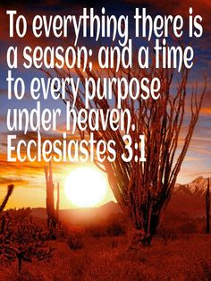 """Favorite Poem #4: """"Ecclesiastes 3: A Time for Everything"""""""