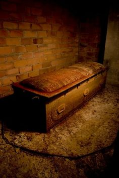 A solitary casket remained in a corner of the pitch black vault. It was no ordinary casket however; it was made of steel, and had eighteen or so clamps on the lid. It appeared to be a special container for bodies that were to be stored for a long period of time, or perhaps infected with a contagious disease - it had the ability to be sealed without contaminating the vault air, and was impervious to seepage.
