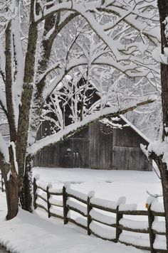 winter snow, state parks, fenc, winter wonderland, the farm, winterwonderland, winter scenes, christma, old barns