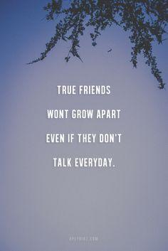 truefriend, true friend