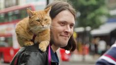 The once-stray cat helped a London heroin addict turn his life around and inspired an international bestseller.
