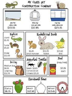 Fun way to teach money skills...class pet