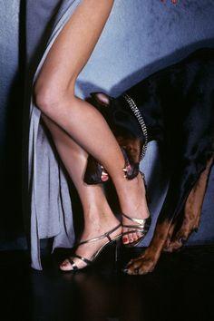Christie Brinkley, Vogue US February 1977  Photographer: Chris Von Wangenheim