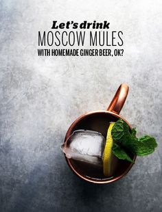 Moscow Mule with homemade ginger beer // Take a Megabite