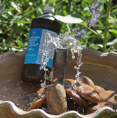 Fountain cleaning tip by Garden Grace. Hydrogen Peroxide.