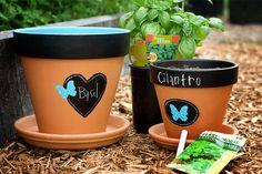 plant, chalkboards, craft, painted pots, chalkboard paint