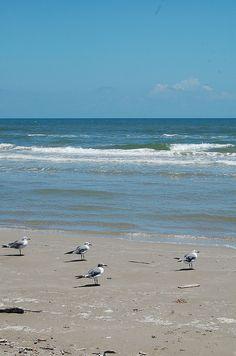 beach texas, beaches in texas, island beach, mustang island texas, place, beach trips