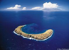 Molokini Crater. Hawaii