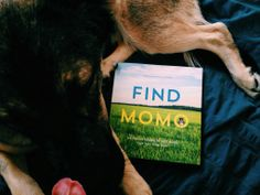 Find Momo by Andrew Knapp - published by Quirk Books. Available March 14th, 2014.