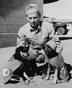"""Private First Class Norman Diamond of Brooklyn, New York gives a congratulatory pat to """"Staff Sergeant Basic"""" and """"Private First Class Adler,"""" who have just received promotions under authority of DL (Dog Land) regulation 0000-900.  They were the mascots of a U.S. Signal Service company somewhere in India, 1942."""