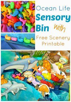 Ocean Life Sensory Bin with Free Printable Scenery
