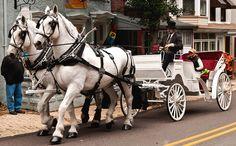 Horse Drawn Carriage - The Square - Jim Thorpe, PA