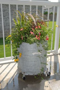Planted old mop bucket