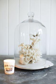 Bell jar ideas