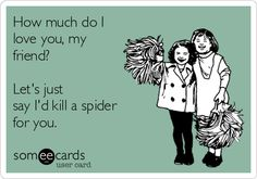 How much do I love you, my friend? Let's just say I'd kill a spider for you.