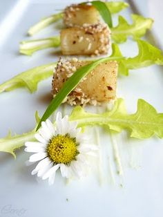 Dandelion Salad with Roasted Sunchoke and Ramson Flavoured Goat Cream ...