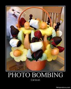Photo Bombing
